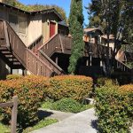 Levin Johnston transacts $40.5 million multifamily acquisition in Mountain View, California